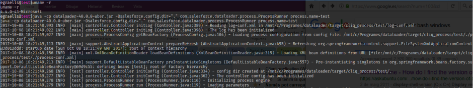 Ejecución de Data Loader en Bash Ubuntu Windows Linux Subsystem