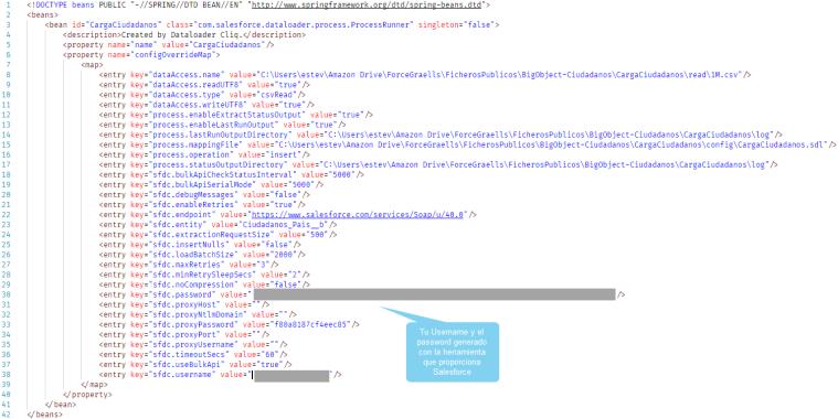 Contenido del fichero process-conf.xml
