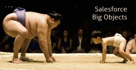 Salesforce Big Objects